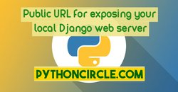 Python Tip 1: Accessing localhost Django webserver over the Internet